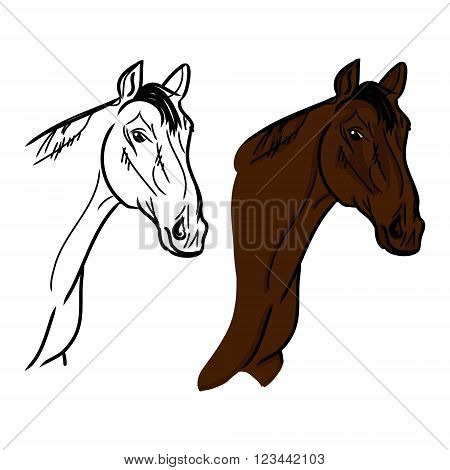 Graphic image of a horse's head in the form of contour lines of black. Vector on white background. Figure brown horse