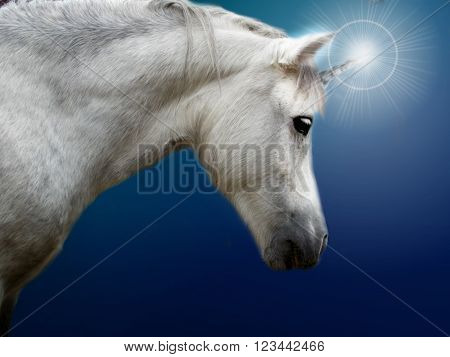 Photo of realistic white pony as unicorn