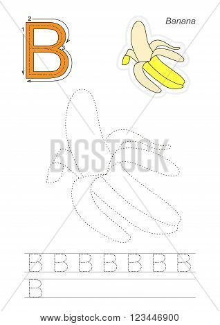 Vector exercise illustrated alphabet. Learn handwriting. Page to be traced. Complete english alphabet. Tracing worksheet for letter B
