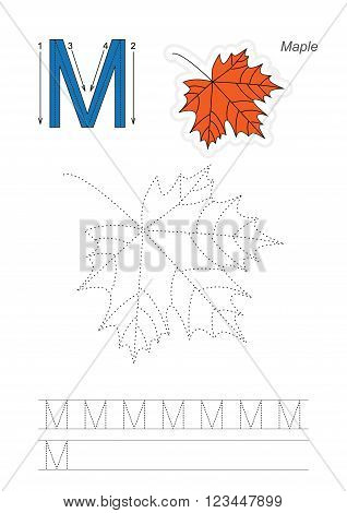 Vector exercise illustrated alphabet. Learn handwriting. Page to be traced. Complete english alphabet. Tracing worksheet for letter M