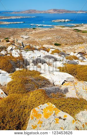 Sea In Delos
