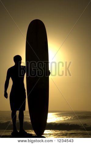 Longoard At Sunset