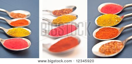Four Spices Collections Presented In Teaspoons