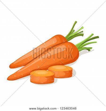 Carrot isolated on white. Vector illustration EPS10