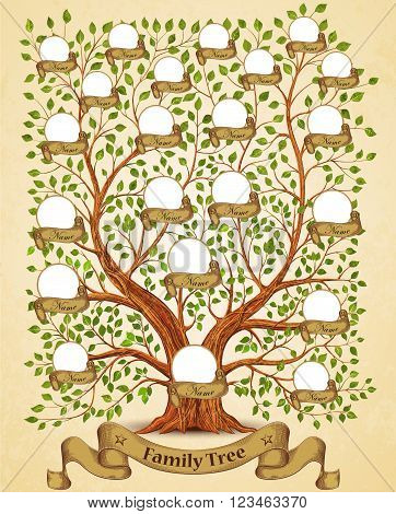 Family Tree template vintage old vector illustration