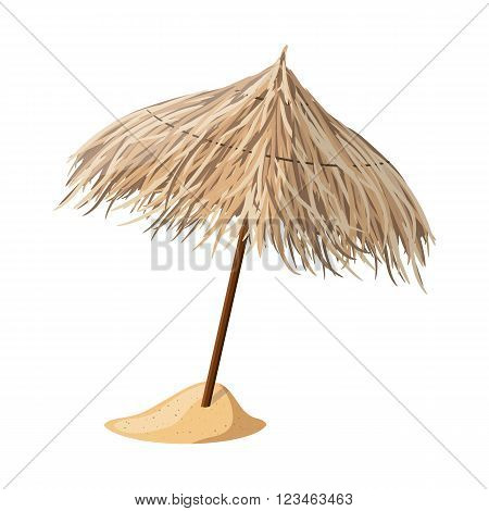Beach umbrella from cane. Vector illustration. EPS10