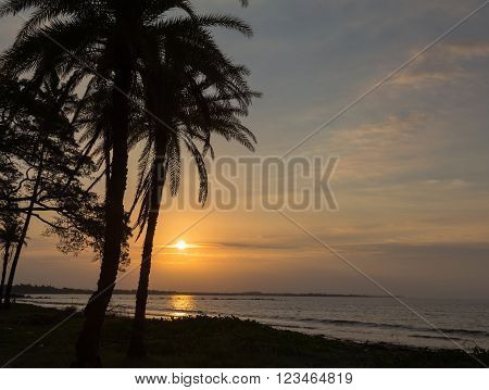 Beautiful sunset on the ocean on a background of palm trees. Fiji.