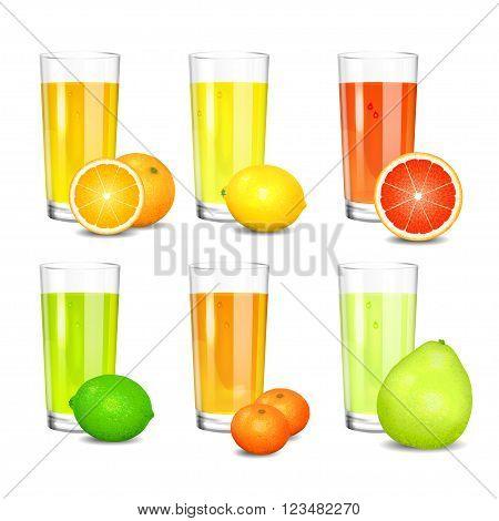 Set of fresh citrus juices. Realistic tall glasses with squeezed citrus juices. Citrus fruits (orange lemon lime grapefruit pomelo mandarin). Vector illustration on white background