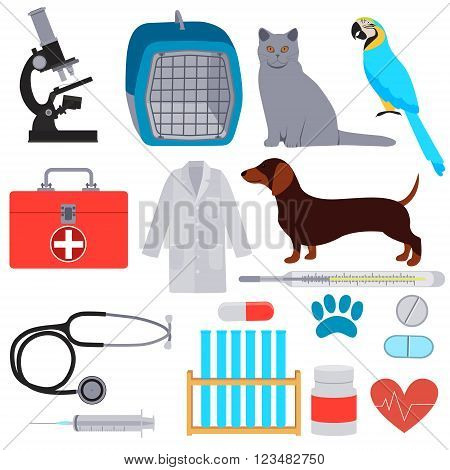 Set Veterinary. Equipment and tools for Veterinary clinic. Vector illustration