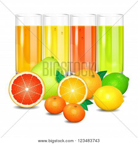 Fresh citrus juice and fruits. Citrus fruits (orange lemon lime grapefruit pomelo mandarin). Set realistic transparent glasses of juice vector illustration on white background