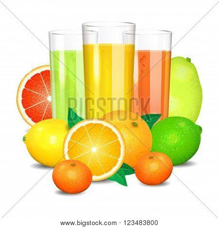 Fresh citrus juice and fruits. Citrus fruits (orange lemon lime grapefruit pomelo mandarin). Set realistic transparent glasses of juice vector illustration on white background