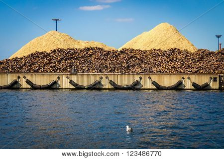 Big piles of wood chips ready for shipment