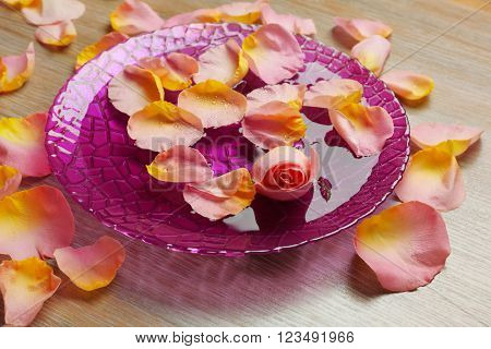Pink rose petals in purple bowl with water on wooden background
