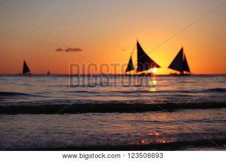 Yachts sailing in tropical sea at sunset