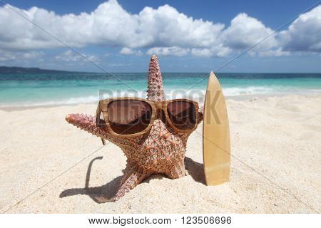 Starfish surfer on sand of tropical beach at Philippines