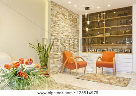 Modern Luxury Living Room - Home Styling