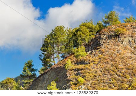 Landscape with hills and bushes in Troodos mountains Cyprus