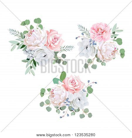 Bouquets of rose peony anemone camellia brunia flowers and eucaliptis leaves. Vector design elements.