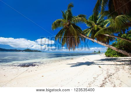Perfect beach on Seychelles with white sand, turquoise waters, palm trees and blue sky