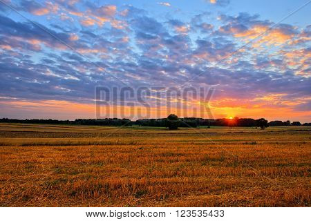 Landscape of sunset at summer fields with blue sky