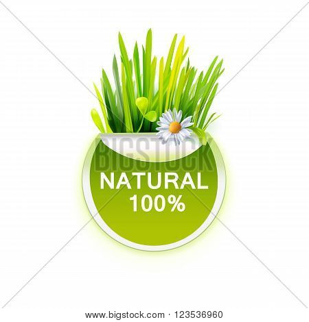 Natural food label with realistic grass and chamomile. Green leaves and flower. Vector illustration of healthy food sticker. Green label for farm organic product identity design.