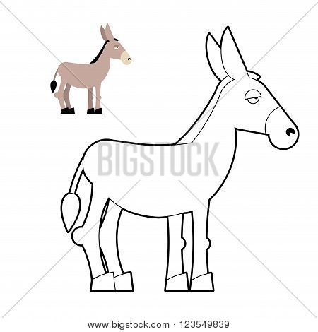 Donkey Coloring Book. Circuit Animal. Childrens Coloring Book With Mule