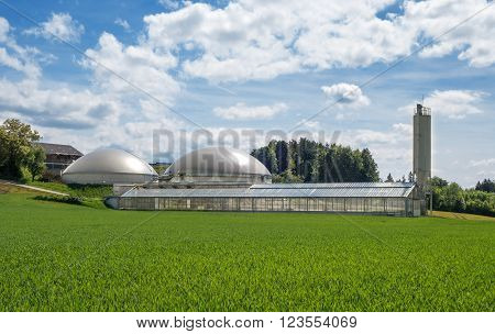 Biogas plant and greenhouse for solar sewage sludge drying in a farm behind a young green cornfield