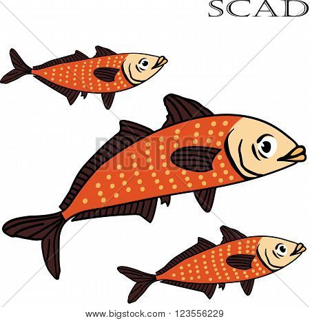 Scad fish color cartoon vector illustration. Scad fishes on white background. Scad fish vector. Scad fish illustration. Scad fish isolated vector.