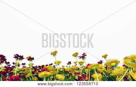 Computer generated 3D illustration with a wildflower meadow isolated on white background