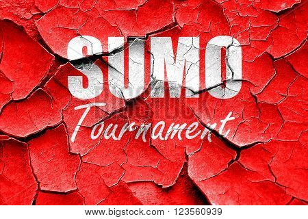 Grunge cracked sumo sign background with some soft smooth lines