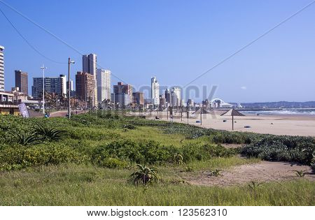 Rehabilitated dunes on beach against city skyline in Durban South Africa