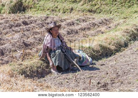 Ollantaytambo, Peru - Circa June 2015: Old Woman In Traditional Peruvian Clothes Sits On The Field N