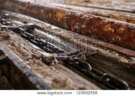 At sawmill. Image of wood and chain, close-up