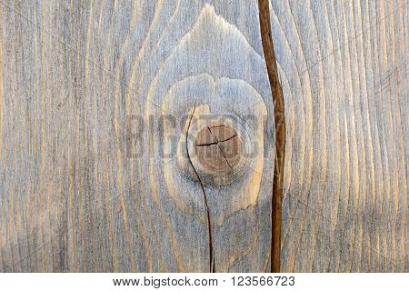 Background of a tree trunk with a heart. The texture of cut wood.  Section of tree trunk. The wood background. Nature for crafts and interior.