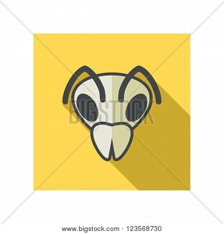 Bee wasp bumblebee flat icon. Animal head vector symbol eps 10