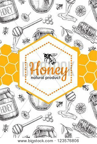 Vector honey bee hand drawn illustrations. Honey jar bee honeycomb flower objects. Honey banner poster label brochure template for business promote.