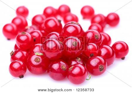 Red currant; Objects on white background