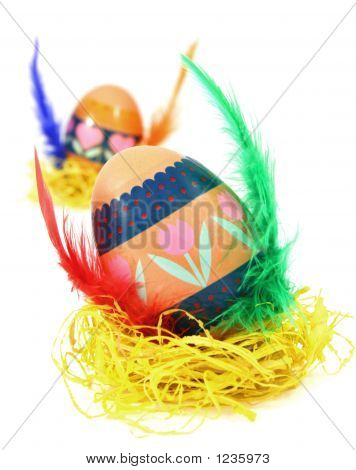 Measter Egg