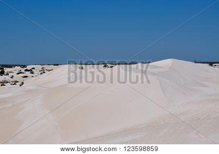 White desert landscape at the Lancelin Sand Dunes under a clear blue sky in Western Australia.