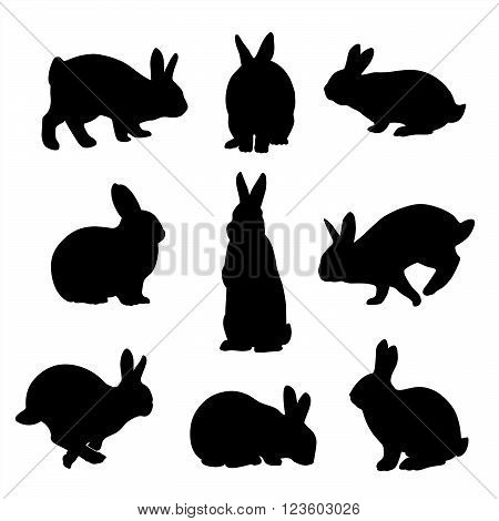 Easter Bunny vector Rabbits set silhouettes icon Graphic Vector