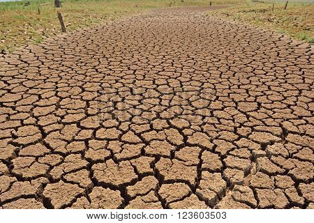 earth cracked because of drought , soil, cracks, drought, desert,
