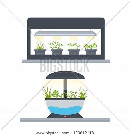Vector concept Indoor garden. Light grow garden.