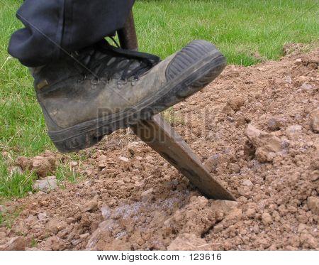 Dig 3