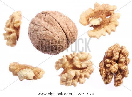 Walnut kernels isolated on a white background.