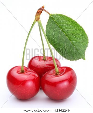 Three cherries with leaf isolated on a white background.