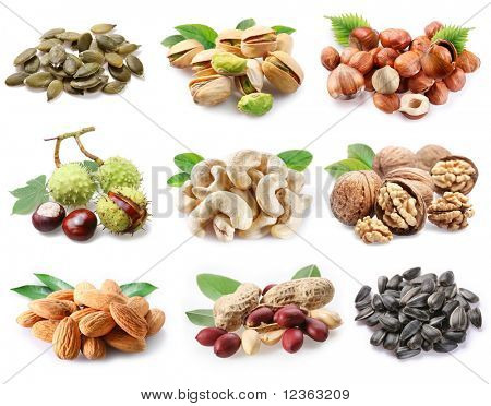 Collection of ripe nuts and seeds on a white background