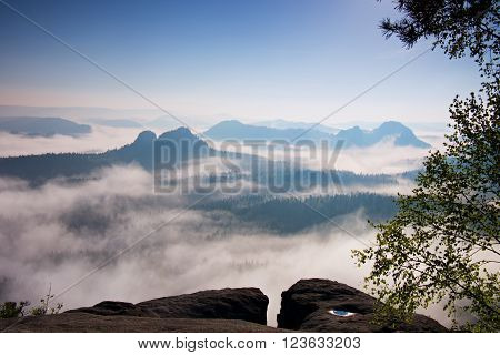 Deep misty valley within daybreak. Foggy and misty morning on the sandstone view point in national park Saxony Switzerland in Germany.