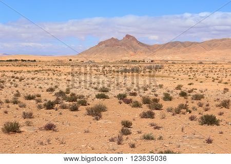 Arid desert in the Middle Atlas Mountains in Morocco Africa