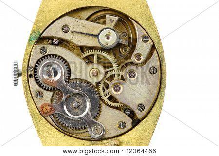 Antique golden wristwatch mechanism on white background