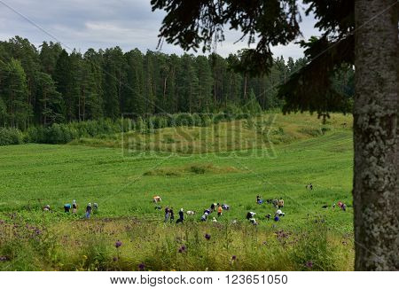 VALAAM ISLAND, RUSSIA - JULY 29, 2015: Volunteers working in the Valaam monastery. After a year or two, the volunteer may became the novice